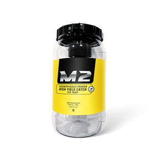M2 - Fly Trap